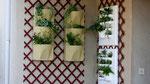 Mur végétal Flowall et Vertiss
