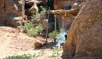 Une bédouine sur les hauteurs de Petra