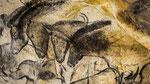 Les chevaux de la Grotte Chauvet !