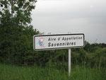 """""""Savenières"""" le domaine des blancs secs"""