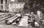 Les blanchisseuses de Nohanent, en 1952
