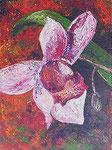 430 PB Orchidee, Acryl auf Hartfaser, 2014, 30x40 cm, 150 Euro