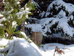 Der Schnee schützt