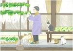 畑の収穫冬支度
