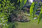 Gartenansicht zur Nachbarin