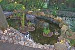 Mein kleiner Teich
