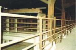Die Verladerampe und Absperrgitter beim Bahnhof St.Johann für die Schlachthof-Tiere des ACV und der Stadt,1983