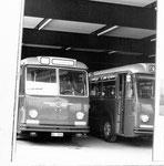 Verschiedene BVB-Busse in der Garage Rankhof, 1970