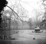 Lange Erlen, Der Ententeich im harten Winter 1962/1963 (wochenlang bis 20 Grad unter Null)