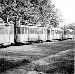 Verschiedene Trammotorwagen der Serie Be 2/2 auf den vielen Abstellgeleisen beim Eglisee, 1970
