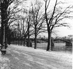 Der Untere Rheinweg im Kleinbasel mit Blick gegen die Johanniterbrücke, 1959