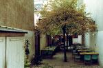 Die schattige Gartenwirtschaft des Restaurant Aeschentor, 1978