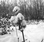 Lange Erlen im schneereichen Winter 1962/1963
