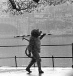 Vogel Griff 1959, Der Leu wartet auf seinen Auftritt zum Tanz