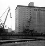 Die Krananlagen und das riesige Silo der NEPTUN im Hafenbecken 2 im Jahre 1982 (der Kran links wurde einige Jahre später zum FCB-Kran umgemalt)1982