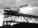 Die Bis Kohlenlager AG im Jahre 1975 mit dem rot/weissen 400 Tonnen schwere Kran Nr. 2 (Baujahr 1940) im Birsfelder Hafen, 1975  (heute Birsterminal AG)