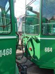 Trammotorwagen Be4/6 Nr.664 und Anhängewagen B4 Nr.1468