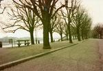 Der St.Johann-Rheinweg an einem ruhigen Sonntagmorgen im Winter 1980
