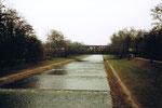 Der Fluss «Wiese» in den Langen Erlen mit Blickrichtung Norden im Jahre 1983