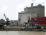 Diverse Krananlagen der SILAG und ROBA im St.Johann-Hafen, 2008  (leider wurde keiner der Kräne als technisches Denkmal und als Erinnerung an den St.Johann-Hafen stehen gelassen! - typisch Basel?)