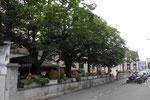Der ehemalige schöne und gemütliche Garten des Restaurant Erlengarten im Jahre 2018.  In diesem fanden in den 50er bis in die 70er-Jahre originelle Gartenfeste statt. Heute ist es ein hässlicher Abstellplatz.
