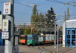 Einige Trammotorwagen der BLT vor der Wagenhalle der «Thüringer Waldbahn» in Gotha, Oktober 2018