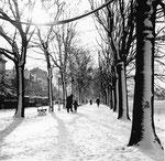Der untere Rheinweg im schneereichen Winter 1960
