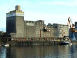 Die Silos der RHENUS (vormals NEPTUN und SRN) im Hafenbecken 1, 2013
