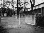 Die ruhige Anlage hinter der Baslerhalle 8 (Kongresshalle) 1974