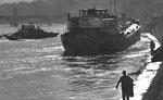 Der St.Johanns-Rheinweg nach der Bergung der havarierten «Padella» am 20.Oktober 1960