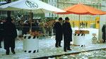 Die Fasnacht 1984 am Claraplatz mit dem Fasnachtscomité und dem Ehren-Obmann Philipp Fürstenberger (erster von rechts)