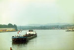 Einfahrt der «MS Elisabeth Jägers» ins Hafenbecken 1 im Jahre 1977