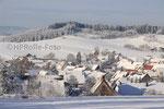Aasen im Winter 2008/2009