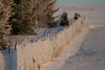 Winterspiel am Maschendrahtzaun