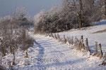 Wanderweg in Aasen im Januar 2009