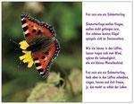 73) Postkarte A6 - 1,00 €