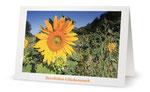 9) Glückwunschkarte (Klappkarte - 182x117 cm) 1,70 €
