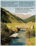 96) Postkarte mit Text 1,00 €