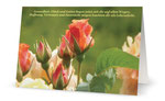 13) Glückwunschkarte (Klappkarte - 182x117 cm ) 1,70 €