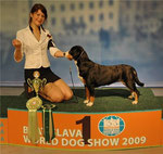 Korolevstvo Gornih Psov Victoria - ex 1, CAC, CACIB, WORLD WINNER, BOB (World dog show '09)
