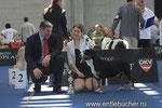 Королевство Горных Псов Шелл - Чемпион Мира 2012 г. Лучший Представитель Породы!!