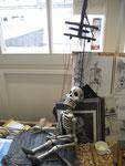 """""""Squelette"""" , 2017 / Colmanshow, France"""