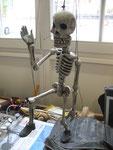 """"""" Squelette"""" 2017 D.Colman FR"""