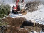 Henzelmann's Baumpflege AG