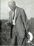 Examining a stone implement in Northern Rhodesia