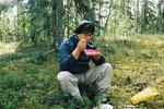 """Finnland Oulanka 2003 """"Wandern mit den Mücken"""""""