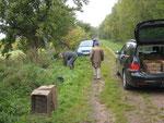 Vor dem Fest die Arbeit - Äpfel sammeln (c) Jürgen Hülskämper