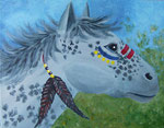 Indian Pony - Appaloosa