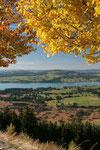 Herbstimpressionen mit Forggensee im Hintergrund