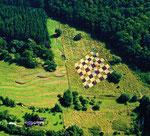 Schach, Landart Reipoltskirchen/Pfalz, 2008 - © Copyright 2014 by HEINRICH BETZ, Rheinland-Pfalz/Saarland | Alle Rechte vorbehalten